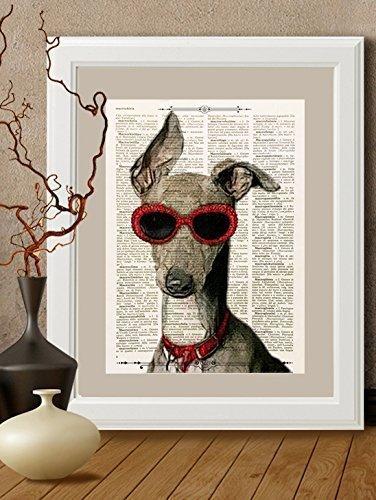 Stampa bracco weimar con occhiali rossi su pagina di libro antico