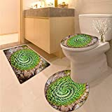 Plant Bathroom Toilet mat Set National Flower of Lesotho South of Africa Aloe Polyphylla Spinning Spiral Aloe Vera 3 Piece Toilet lid Cover mat Set Multicolor