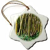 3dRose Bamboo Grove, Allerton Garden, Kauai, Hawaii, USA Snowflake Ornament, 3''