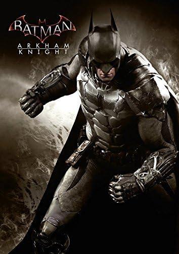 Batman Arkham Knight Poster by Forza Motorsport 6: Amazon.es ...
