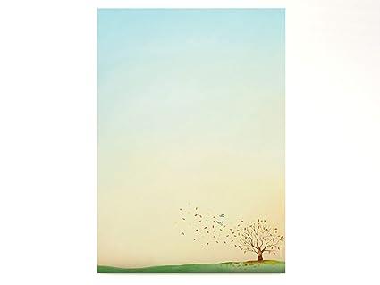 paperandpicture.de - Papel de calco (100 hojas, DIN A4, 90 g/m² ...