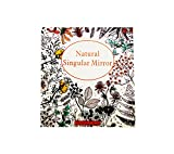 Pure Acoustics Adult Coloring Book Natural Singular Mirror/Fantasy Dream, 2 Count