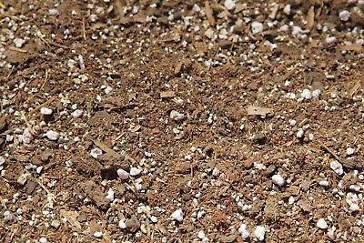 Amazon com : Horse Manure/Coconut Coir Mushroom Growing