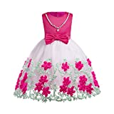 Romance8 6 Tutu Girls, Sleeveless Ribbon Print Flower Mesh Tutu Dress Hot Pink