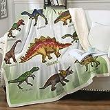 "Sleepwish Dinosaur Throw Blanket Kids Boys Ancient Animal Sherpa Fleece Blanket Green White Dinosaurs Blankets (50"" x 60"")"