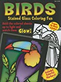 img - for Birds Stained Glass Coloring Fun (Boxed Sets/Bindups) book / textbook / text book