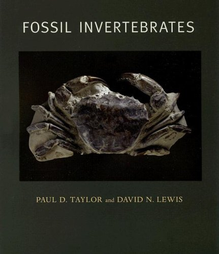 Image result for fossil invertebrates taylor and lewis
