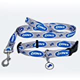 Hunter Detroit Lions Pet Collar, X-Small
