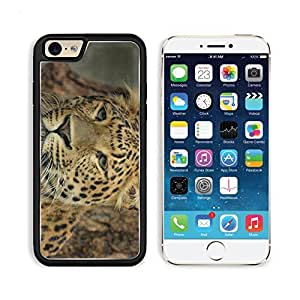 Leopard Muzzle Eyes Big Cat Apple iPhone 6 TPU Snap Cover Premium Aluminium Design Back Plate Case Customized Made to Order Support Ready Liil iPhone_6 Professional Case Touch Accessories Graphic Covers Designed Model Sleeve HD Template Wallpaper Photo Ja