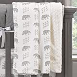 Liz and Roo Cubby Minky Receiving Blanket, Gray/Taupe