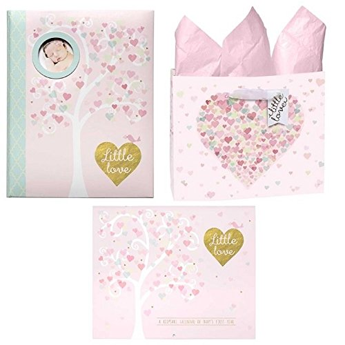 FAKKOS Design Complete Baby Shower Set for Girls Memory Book & First Year Calendar with Matching Bag and Tissue Paper Elegant Gold Pink Foil Glitter