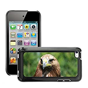 Just Phone Cover Etui Housse Coque de Protection Cover Rigide pour // M00139085 Adler Raptor Ave Rapaz Aves // Apple ipod Touch 4 4G 4th