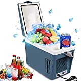 Appliances : OJA 12V Personal Cooler / Warmer Car Refrigerator-7L (Blue)