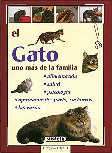 El gato [May 18, 2000] Susaeta, Equipo: Equipo Susaeta: 9788430597420: Amazon.com: Books