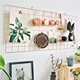 Kufox Rose Gold Photo Display for Grid Wall, Photo Collage Wall Frame,Inspirational Quotes,Wall Photo Artwork Display For College Dorm Room,Pack of 1 Pcs,Size: 17.7'' x 37.4''
