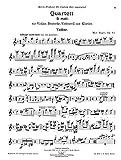 Reger : Quartett d-moll fur Violine, Bratsche, Violoncell und Klavier. Op. 113