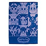 Pokemon Center Original cotton blanket pokémon time EIEVUI COLLECTION