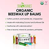 USDA Organic Lip Balm by Sky Organics – 6 Pack