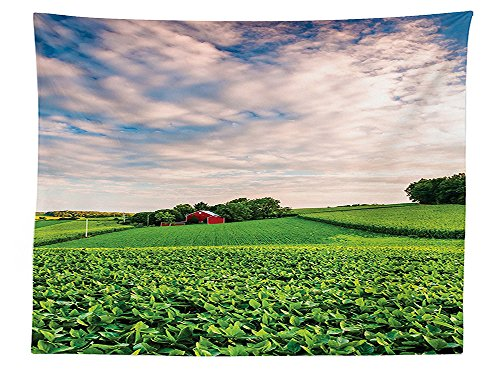 Pennsylvania House Rectangular Table - vipsung Farmhouse Decor Tablecloth Sunset Clouds Over a Farm in Southern York County Pennsylvania Nature Scenery Dining Room Kitchen Rectangular Table Cover