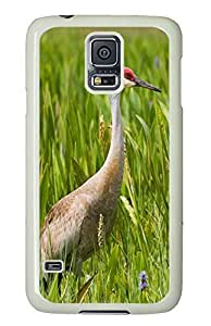 Samsung S5 case protective covers Sandhill Crane Animal PC White Custom Samsung Galaxy S5 Case Cover