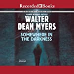 Somewhere in the Darkness   Walter Dean Myers