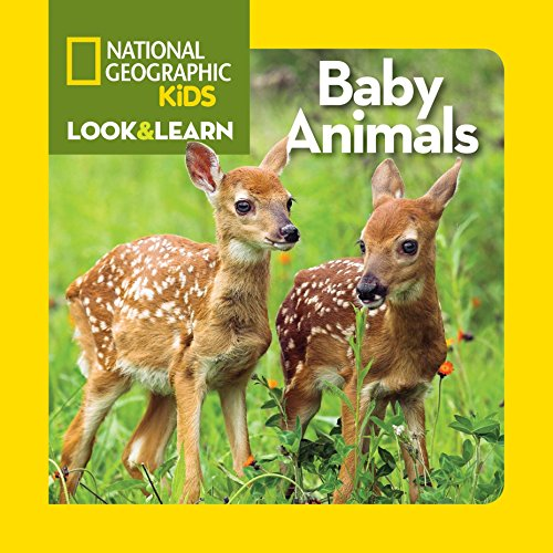 National Geographic Kids Baby Animals