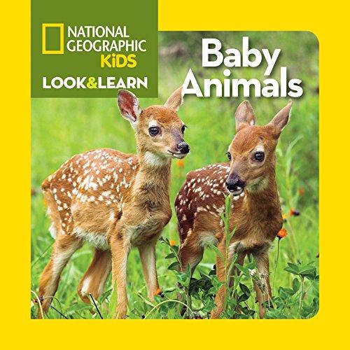 National Geographic Kids Baby Animals