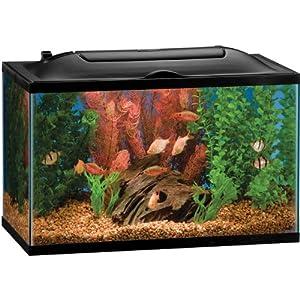 Perfecto kit aquar led biowheel 10g for Petsmart fish guarantee