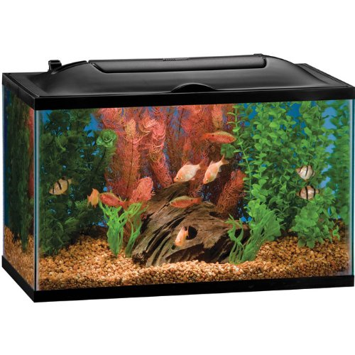 LED Aquarium Kit - 10 Gallon