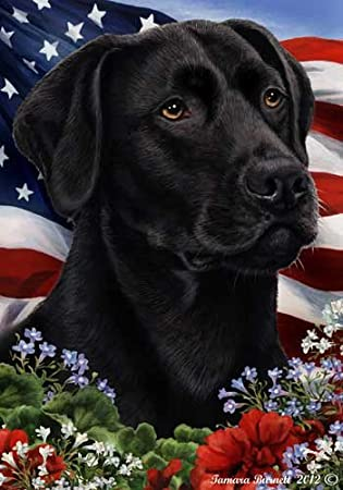 Black Labrador Retriever 190011 Roses Garden Flag