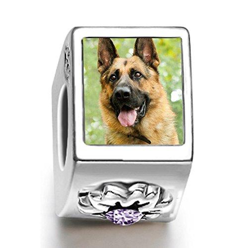 Charms Bracelets Beads Dogs Pets Health Power German Shepherd Dog Ameythyst Crystal Gem
