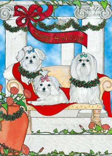 Maltese Christmas Cards : 10 Holiday Cards with Red Envelopes - - Cards Christmas Maltese