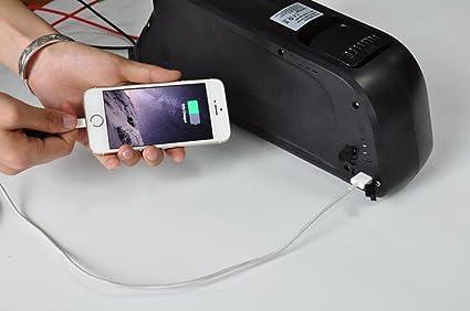 Amazon.com: 2018 Dolphin 48 V 14 ah batería de iones de ...