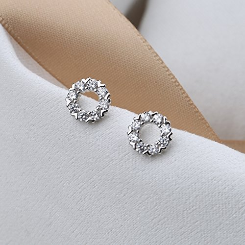 (S925 sterling silver hollow circle earrings simple CZ earrings women girls personality and elegant hypoallergenic earrings wild)