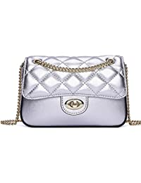 Classic Formal Evening Bag for Women Small Crossbody Purse with Metal Chain Strap (NP2116)