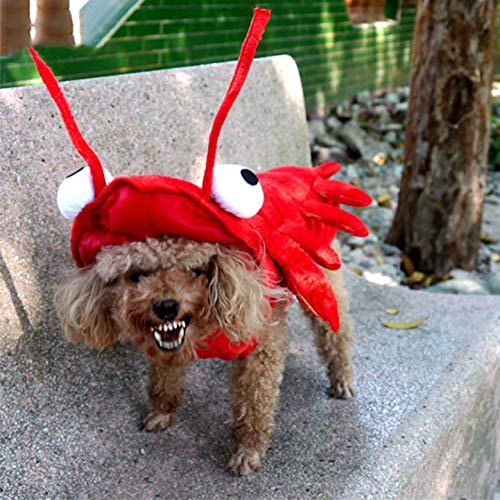 Lobster Pet Costume,Pet Halloween Costume Lobster Cosplay for Cat Dog Teddy Corgi Cat Clothes Autumn Winter Dog Clothes Red,24