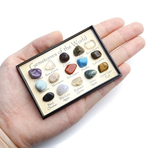 Price comparison product image DIA Mineral Rock Variety Tumbled Rough Gemstone Meteorite Fragment Healing Energy Crystal Collection Box (15 pcs Tumbled Mini Stones on Fixed Display Case)