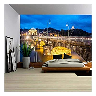 Panoramic View of Turin Italy Wall Mural Decor...