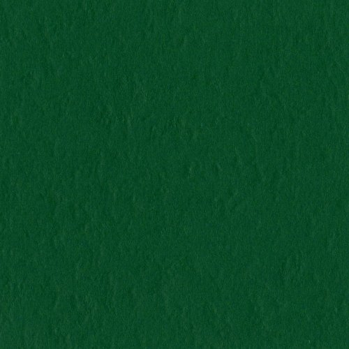- Bazzill Basics Paper T19-5414 Prismatic Cardstock, 25 Sheets, 12 by 12-Inch, Classic Green