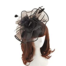 Vintage Flower Feather Mesh Net Fascinator Bride Flower Veil Hair Clip