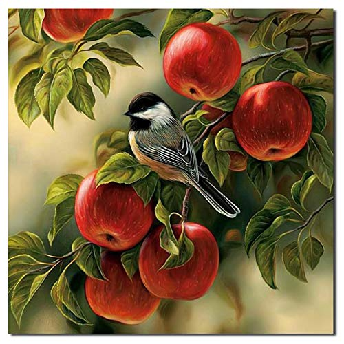 (ReFaXi Abstract Canvas Print Art Oil Painting Wall Picture Home Decor Frameless 11.811.8inches (Fruit &Bird))