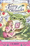 Primrose and the Magic Snowglobe (The Fairy Chronicles, Band 9)
