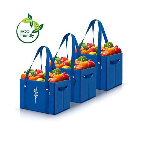 Green BD's Reusable Grocery Bags. Large, Heavy Duty, Collapsible Shopping Box Bags with Fold Up Reinforced Bottom.
