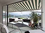 ADVANING Manual Luxury L Series, 10'x8', Semi-Cassette Top Quality Window/Door Canopy Sun Shade Patio Retractable Awning, Garden Green with Sand Beige Stripes, Model: MA1008-A808H2