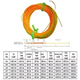 Riverruns 42-50ft Head Wind-Cutter Switch Single Hand Spey Line Long Front Taped Fly Line Ultra Low Stretch Loading Zoom Welded Loops, Floating 90-100ft (WF6F)