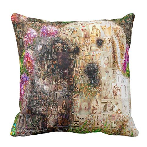 Naierkeji Between Photo Collage Maker and Photo Mosaic Pillow Case 14 X 14 in -
