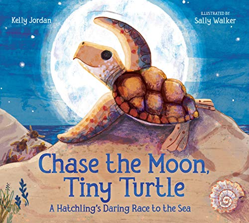 Book Cover: Chase the Moon, Tiny Turtle: A Hatchling's Daring Race to the Sea