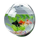 Candora Creative Acrylic Hanging Wall Mount Fish Tank Bowl Vase Aquarium Plant Pot Bowl Bubble Aquarium Decor