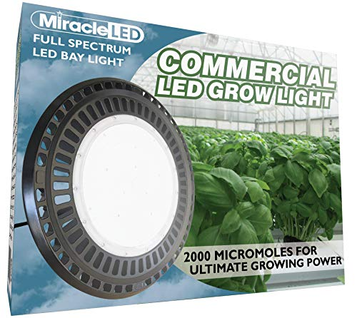 Where To Buy Led Grow Lights
