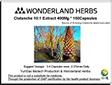 WonderLand Herbs Sinkiang Wild Desertliving Cistanche tubulosa Herbs Extract 400Mg * 100 Capsules Tonic Review